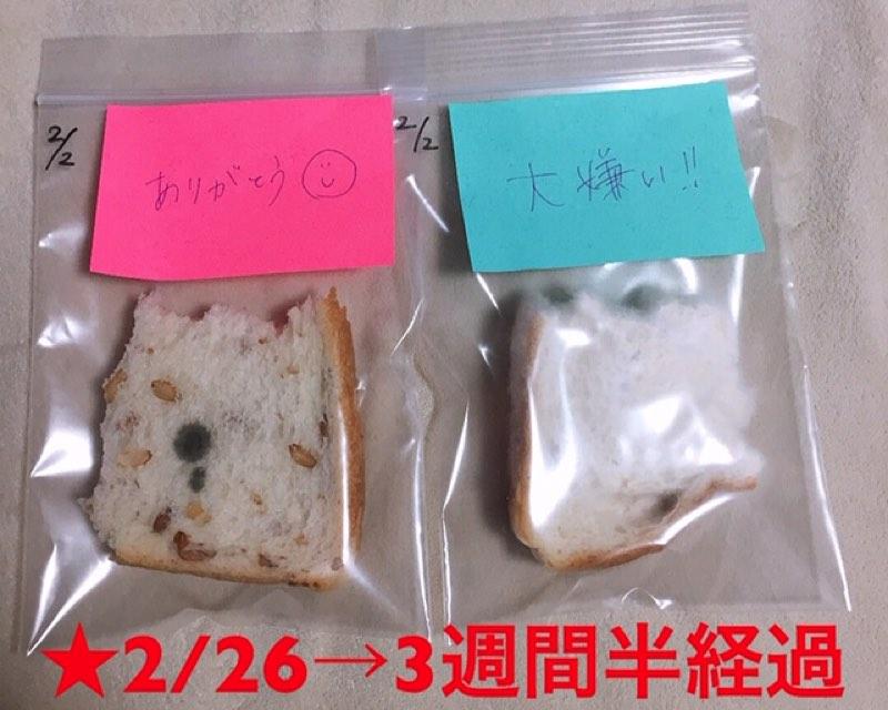 付箋を貼ったパン